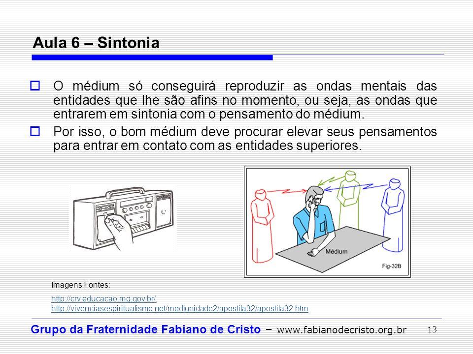 Grupo da Fraternidade Fabiano de Cristo – www.fabianodecristo.org.br 13 Aula 6 – Sintonia O médium só conseguirá reproduzir as ondas mentais das entid