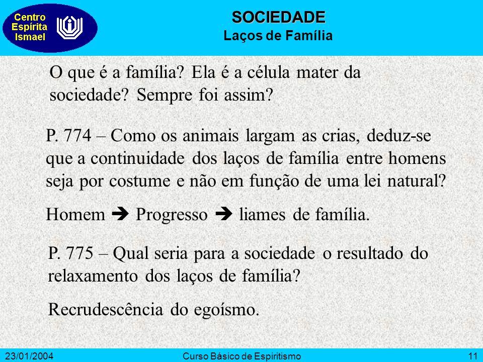 23/01/2004Curso Básico de Espiritismo11 O que é a família? Ela é a célula mater da sociedade? Sempre foi assim? P. 774 – Como os animais largam as cri