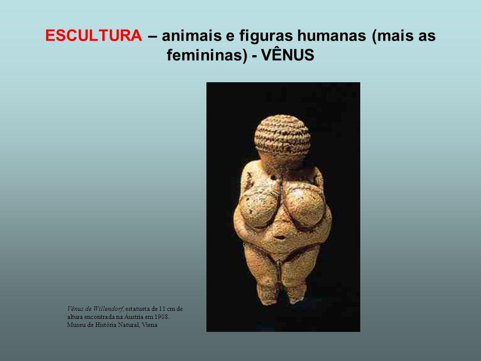 ESCULTURA – animais e figuras humanas (mais as femininas) - VÊNUS Vênus de Willendorf, estatueta de 11 cm de altura encontrada na Áustria em 1908. Mus