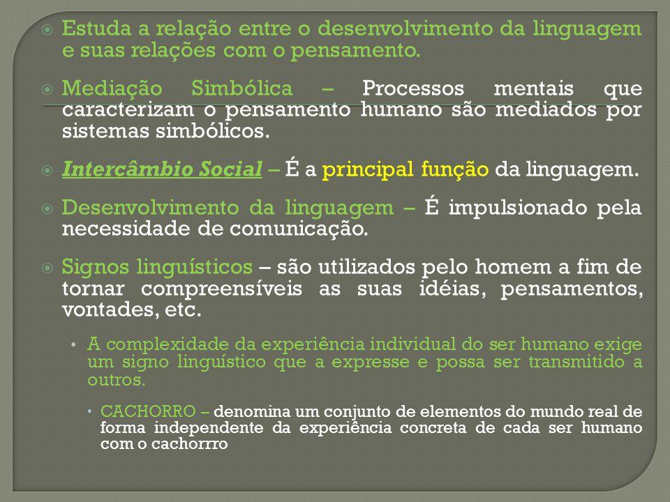 Estuda a relação entre o desenvolvimento da linguagem e suas relações com o pensamento. Mediação Simbólica – Processos mentais que caracterizam o pens