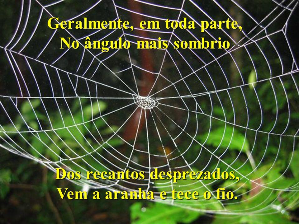 Cartilha da Natureza A Aranha