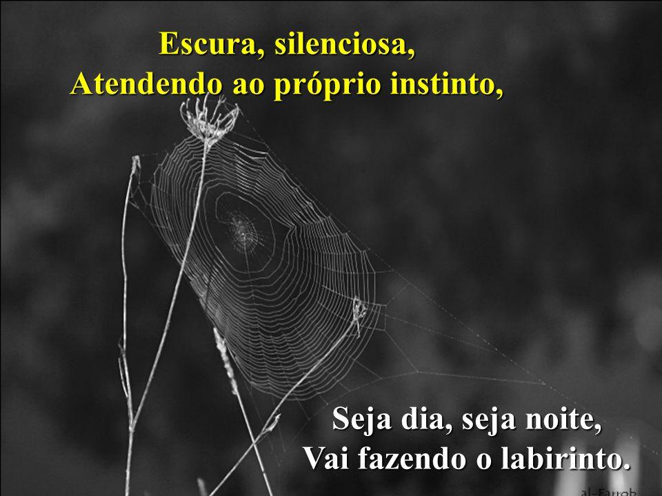 Escura, silenciosa, Atendendo ao próprio instinto, Seja dia, seja noite, Vai fazendo o labirinto.