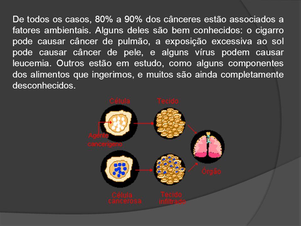 De todos os casos, 80% a 90% dos cânceres estão associados a fatores ambientais.
