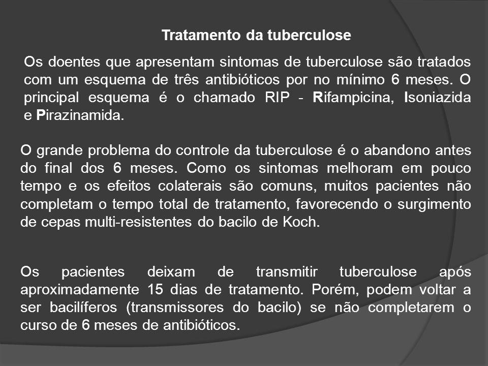 O grande problema do controle da tuberculose é o abandono antes do final dos 6 meses.