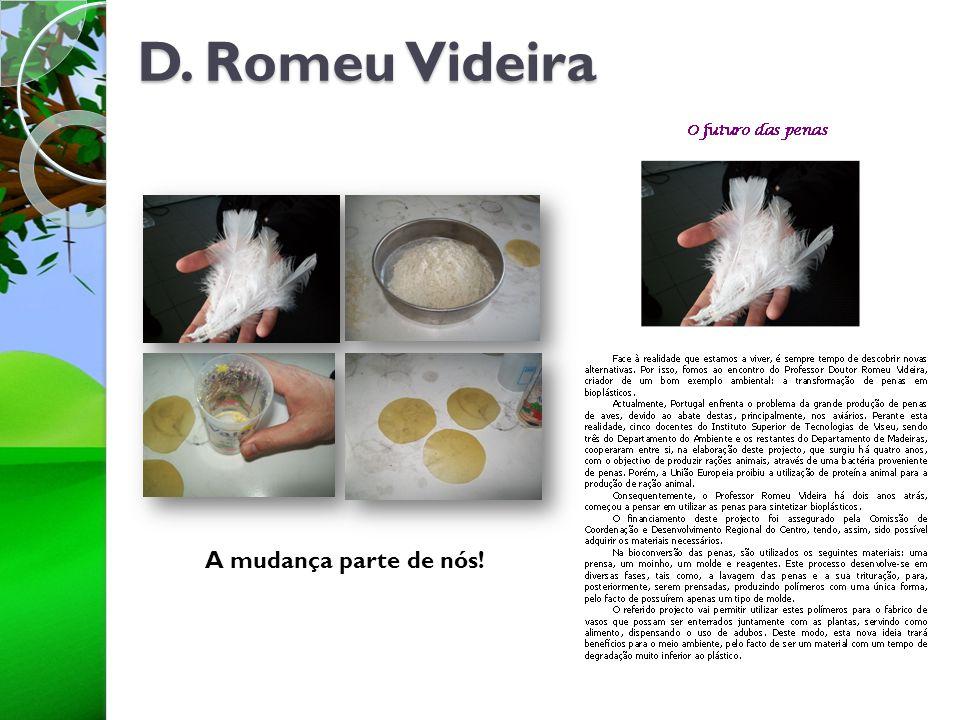 D. Romeu Videira A mudança parte de nós!
