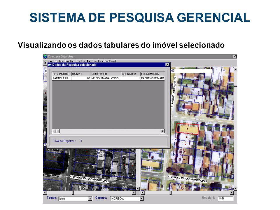 SISTEMA DE PESQUISA GERENCIAL Visualizando os dados tabulares do imóvel selecionado