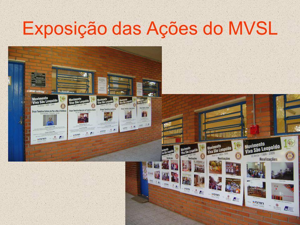 Exposição das Ações do MVSL