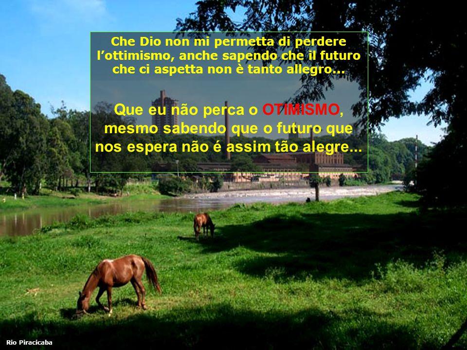 Che Dio non mi permetta di perdere lottimismo, anche sapendo che il futuro che ci aspetta non è tanto allegro...