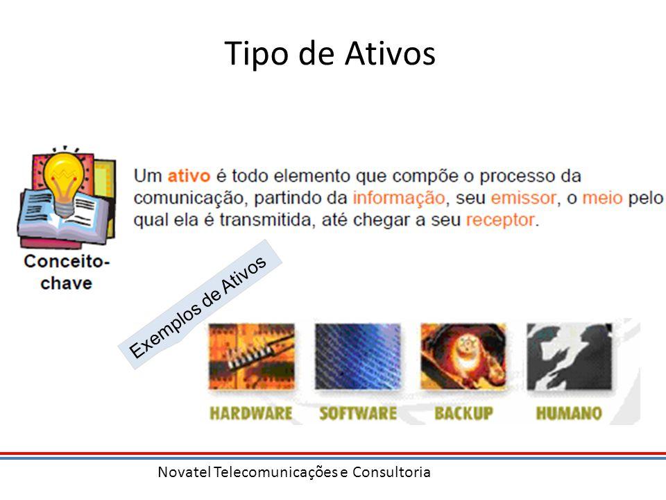 Novatel Telecomunicações e Consultoria Tipo de Ativos Exemplos de Ativos