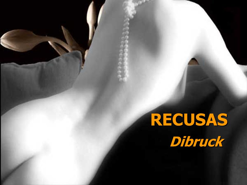 RECUSAS Dibruck