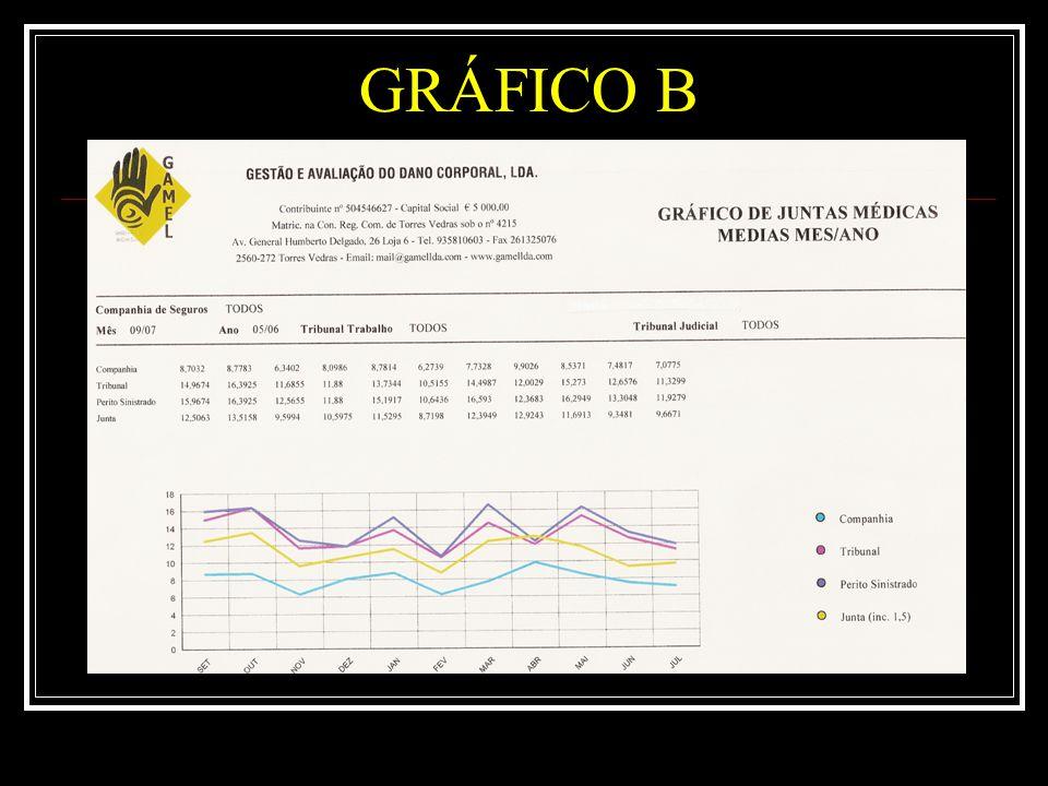 GRÁFICO C