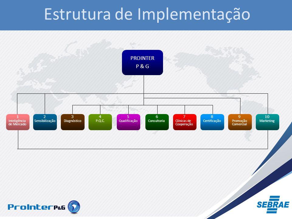 PROINTER P & G Sensibilização 2 Diagnóstico 3 P.Q.C.