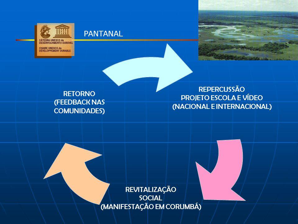 REPERCUSSÃO PROJETO ESCOLA E VÍDEO (NACIONAL E INTERNACIONAL) REVITALIZAÇÃO SOCIAL (MANIFESTAÇÃO EM CORUMBÁ) RETORNO (FEEDBACK NAS COMUNIDADES) PANTAN