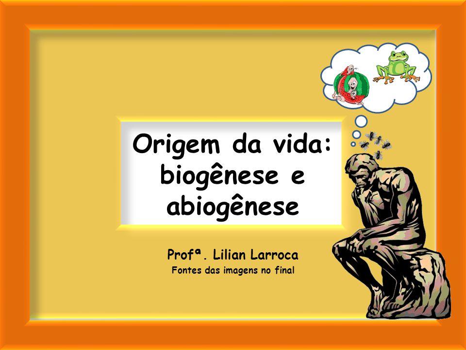 Origem da vida: biogênese e abiogênese Profª. Lilian Larroca Fontes das imagens no final