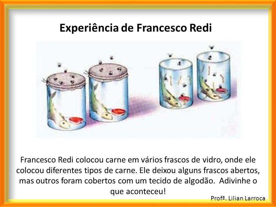 Profª. Lilian Larroca Experiência de Francesco Redi Francesco Redi colocou carne em vários frascos de vidro, onde ele colocou diferentes tipos de carn