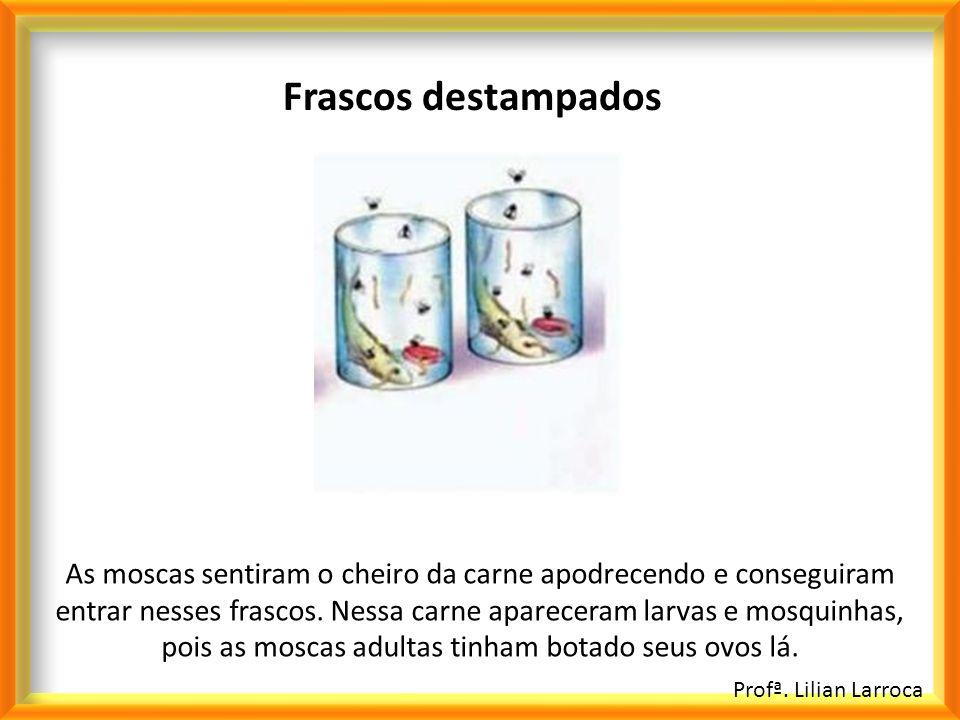 Profª. Lilian Larroca Frascos destampados As moscas sentiram o cheiro da carne apodrecendo e conseguiram entrar nesses frascos. Nessa carne apareceram