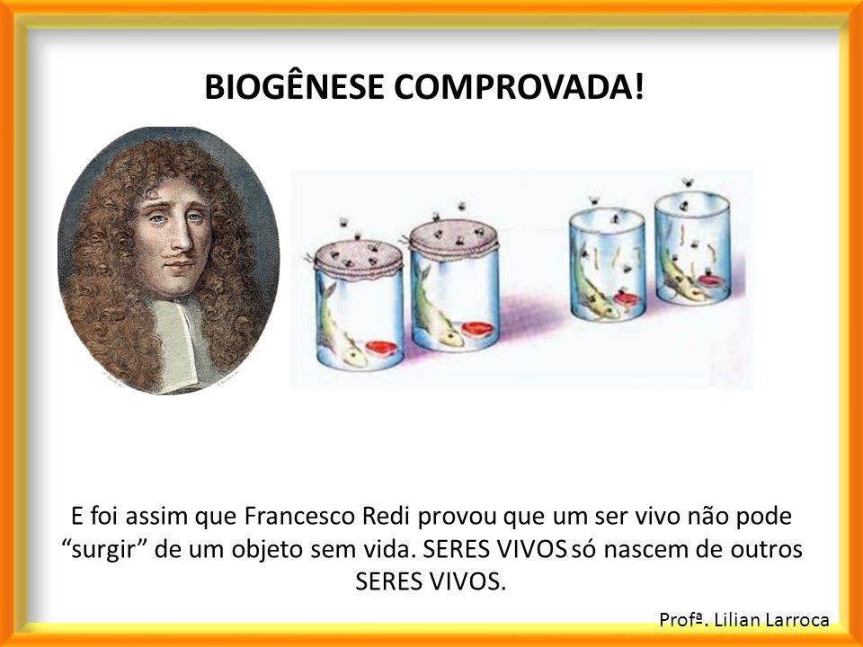 Profª. Lilian Larroca BIOGÊNESE COMPROVADA! E foi assim que Francesco Redi provou que um ser vivo não pode surgir de um objeto sem vida. SERES VIVOS s