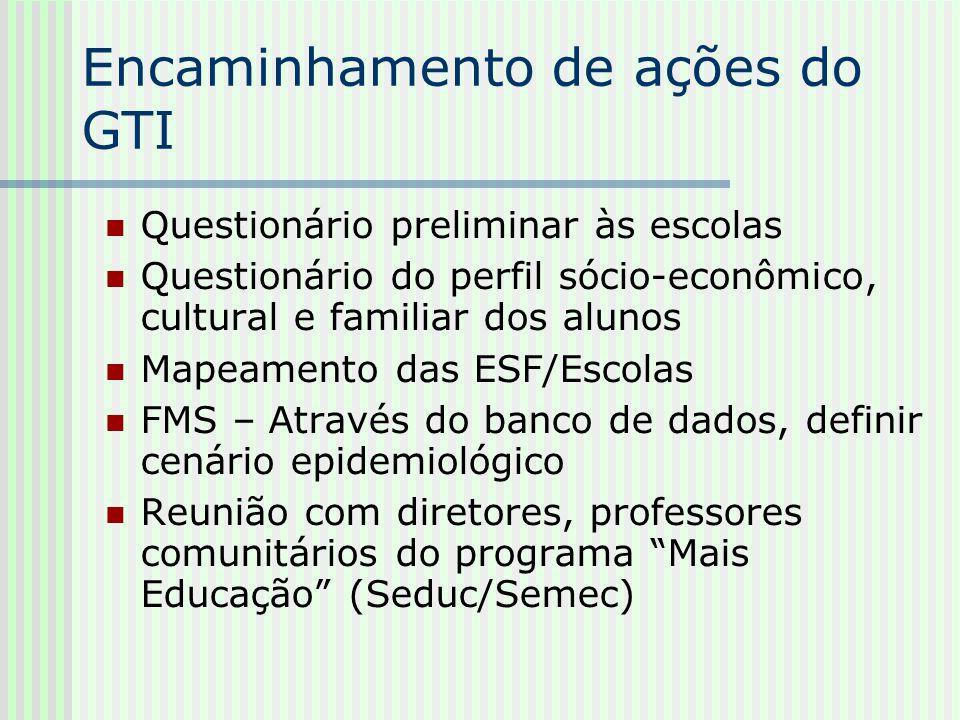 Encaminhamento de ações do GTI Questionário preliminar às escolas Questionário do perfil sócio-econômico, cultural e familiar dos alunos Mapeamento da