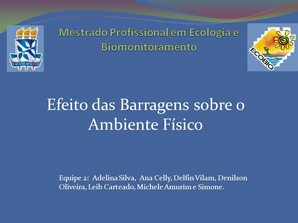 Efeito das Barragens sobre o Ambiente Físico Equipe 2: Adelina Silva, Ana Celly, Delfin Vilam, Denilson Oliveira, Leib Carteado, Michele Amurim e Simo