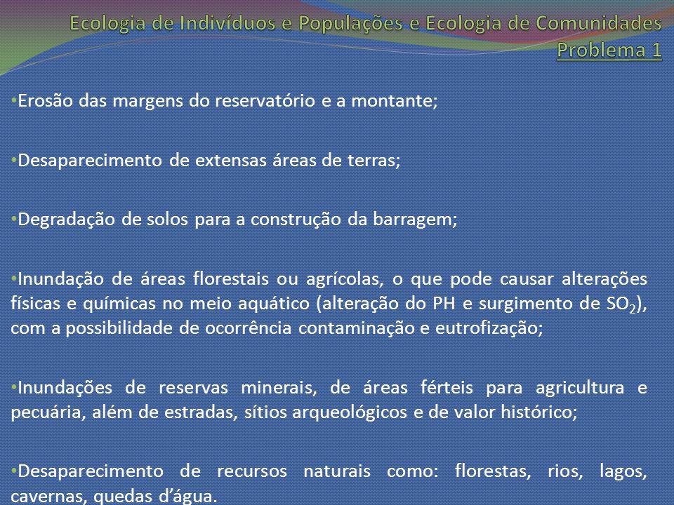 Erosão das margens do reservatório e a montante; Desaparecimento de extensas áreas de terras; Degradação de solos para a construção da barragem; Inund
