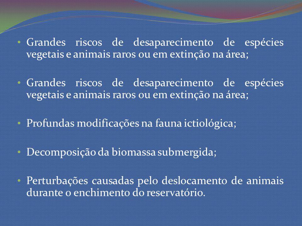 Grandes riscos de desaparecimento de espécies vegetais e animais raros ou em extinção na área; Profundas modificações na fauna ictiológica; Decomposiç