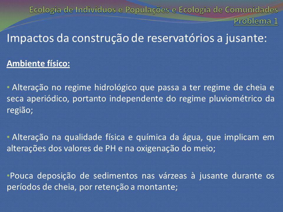 Impactos da construção de reservatórios a jusante: Ambiente físico: Alteração no regime hidrológico que passa a ter regime de cheia e seca aperiódico,