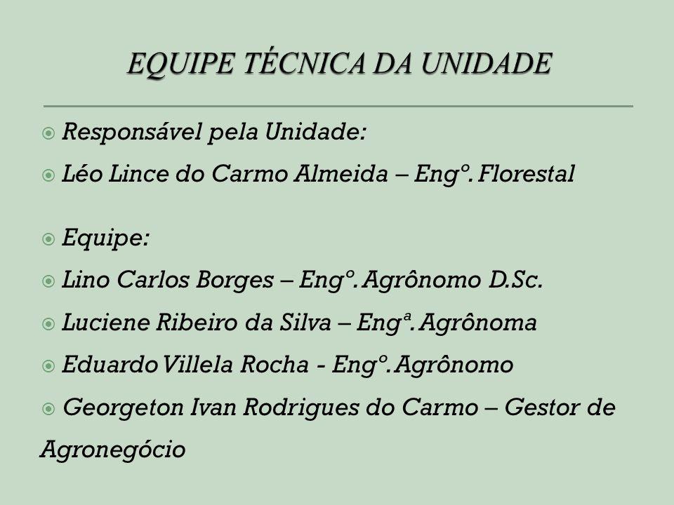 Responsável pela Unidade: Léo Lince do Carmo Almeida – Engº. Florestal Equipe: Lino Carlos Borges – Engº. Agrônomo D.Sc. Luciene Ribeiro da Silva – En