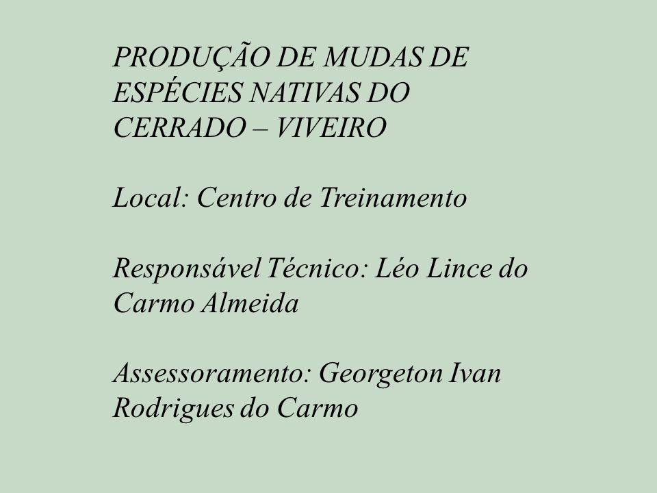 PRODUÇÃO DE MUDAS DE ESPÉCIES NATIVAS DO CERRADO – VIVEIRO Local: Centro de Treinamento Responsável Técnico: Léo Lince do Carmo Almeida Assessoramento