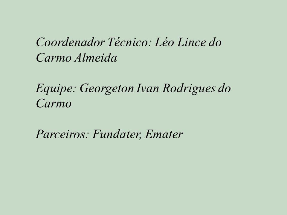 Coordenador Técnico: Léo Lince do Carmo Almeida Equipe: Georgeton Ivan Rodrigues do Carmo Parceiros: Fundater, Emater