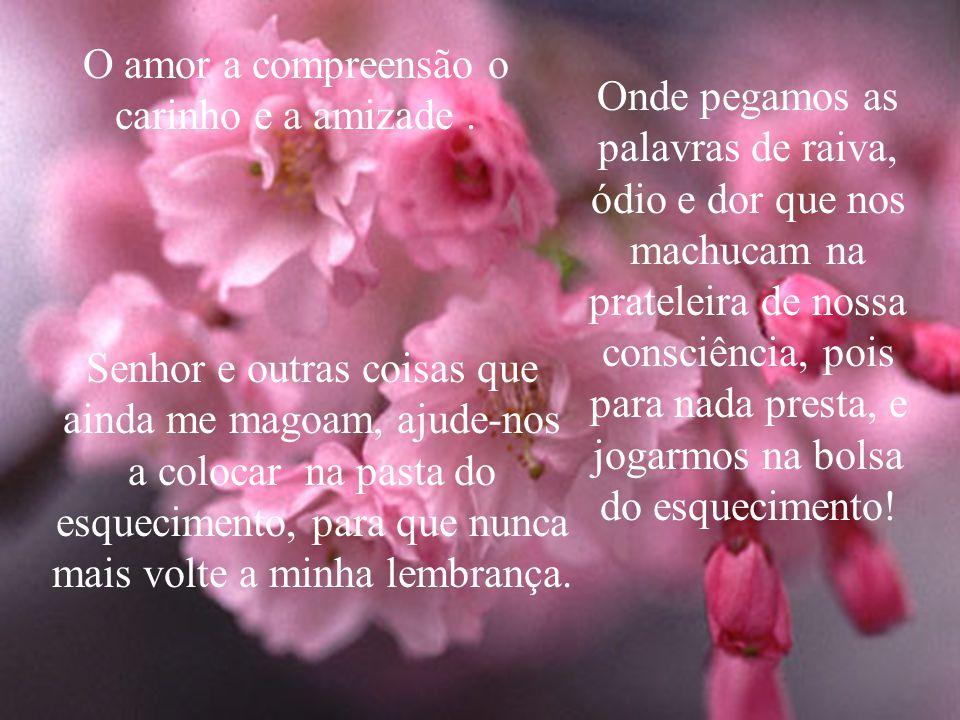 O amor a compreensão o carinho e a amizade.