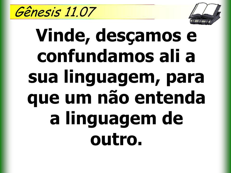 Gênesis 11.07 Vinde, desçamos e confundamos ali a sua linguagem, para que um não entenda a linguagem de outro.