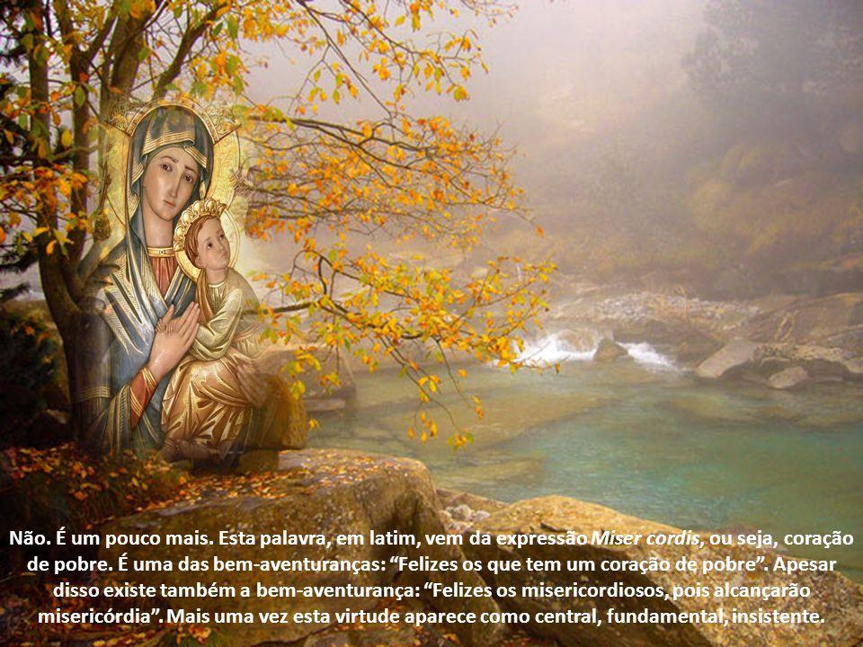 O conselho de Jesus foi muito claro: Sejam misericordiosos como vosso Pai do céu é misericordioso. A Bíblia, já no Antigo Testamento, havia dado esta