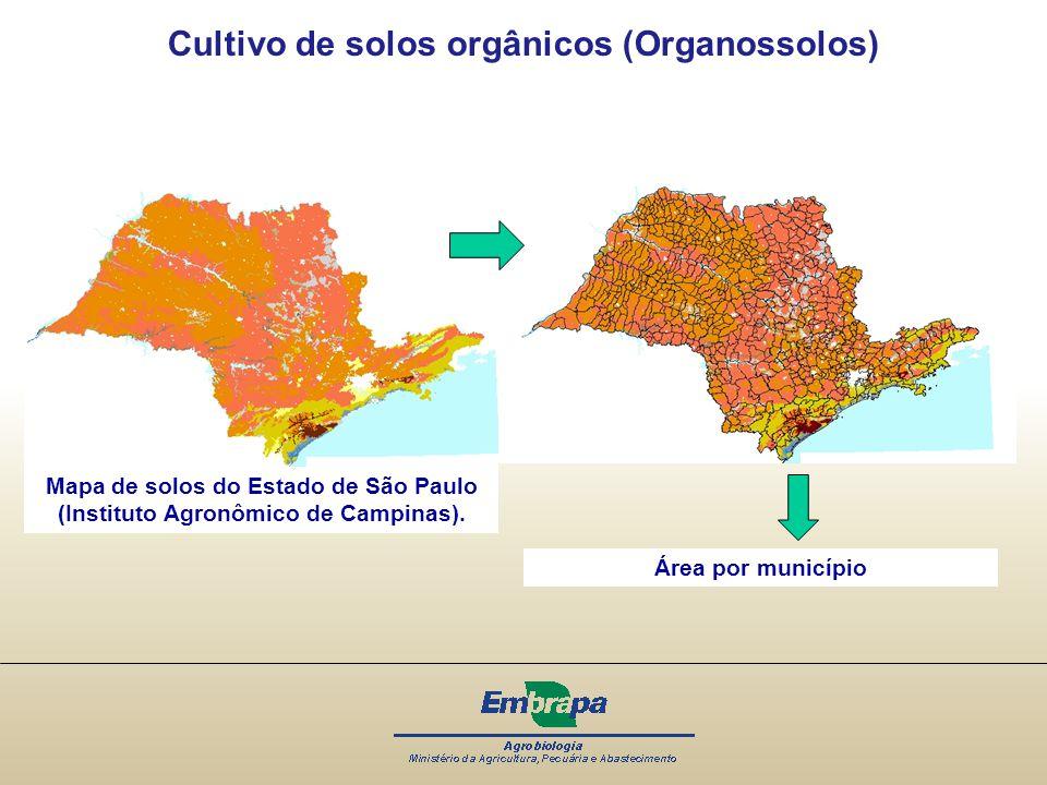 Mapa de solos do Estado de São Paulo (Instituto Agronômico de Campinas). Cultivo de solos orgânicos (Organossolos) Área por município
