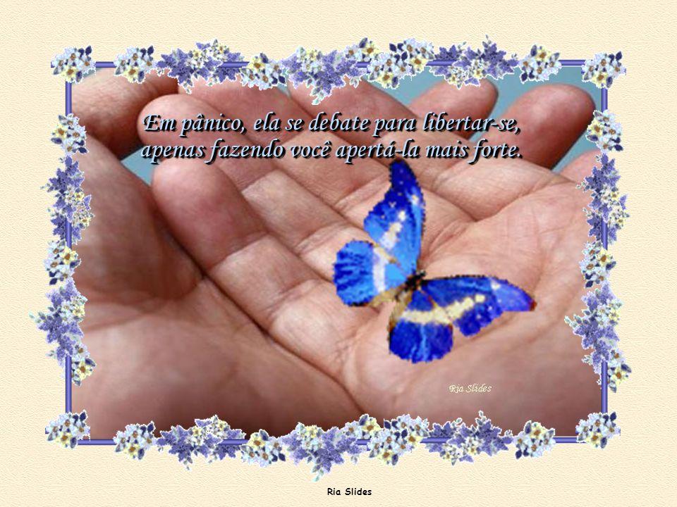 Ria Slides Parte de sua beleza era a sua liberdade! A borboleta sente-se traída.