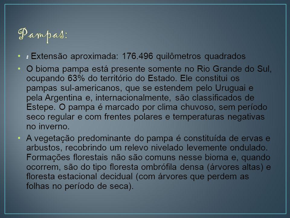 : Extensão aproximada: 176.496 quilômetros quadrados O bioma pampa está presente somente no Rio Grande do Sul, ocupando 63% do território do Estado.