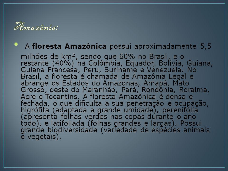 A floresta Amazônica possui aproximadamente 5,5 milhões de km², sendo que 60% no Brasil, e o restante (40%) na Colômbia, Equador, Bolívia, Guiana, Gui