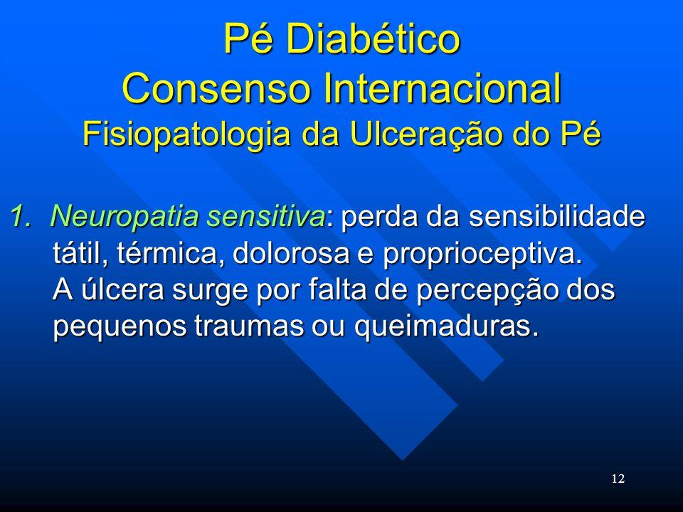 12 Pé Diabético Consenso Internacional Fisiopatologia da Ulceração do Pé 1.
