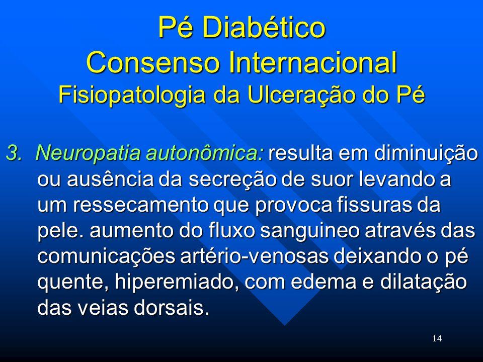 14 Pé Diabético Consenso Internacional Fisiopatologia da Ulceração do Pé 3.
