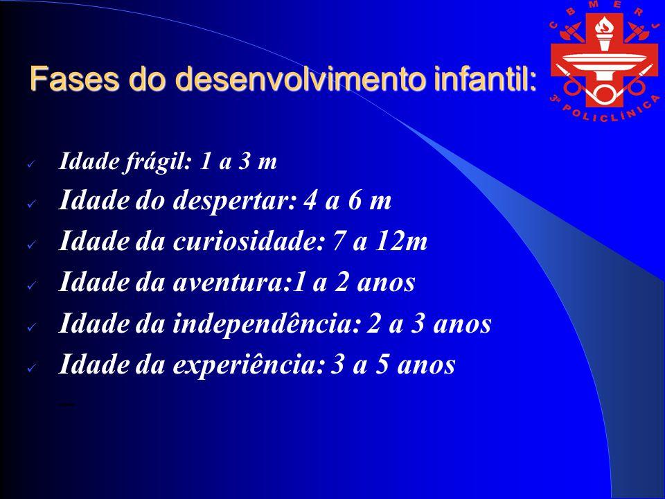 Fases do desenvolvimento infantil: Idade frágil: 1 a 3 m Idade do despertar: 4 a 6 m Idade da curiosidade: 7 a 12m Idade da aventura:1 a 2 anos Idade da independência: 2 a 3 anos Idade da experiência: 3 a 5 anos –