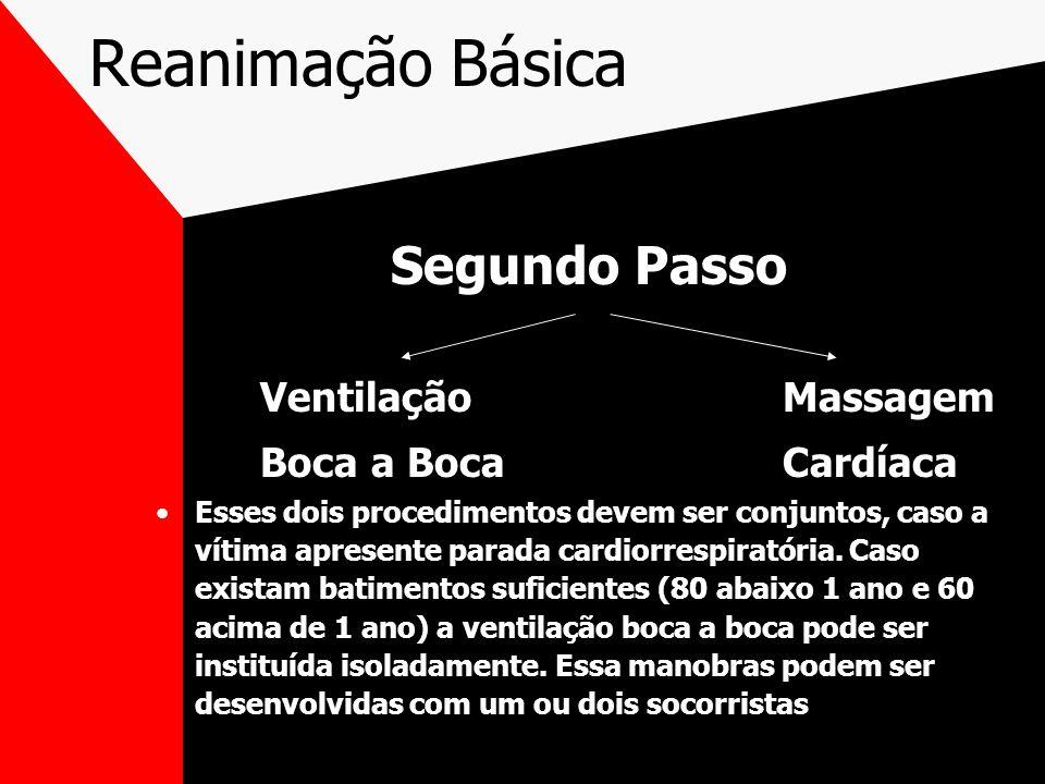 Reanimação Básica Segundo Passo Ventilação Massagem Boca a Boca Cardíaca Esses dois procedimentos devem ser conjuntos, caso a vítima apresente parada cardiorrespiratória.