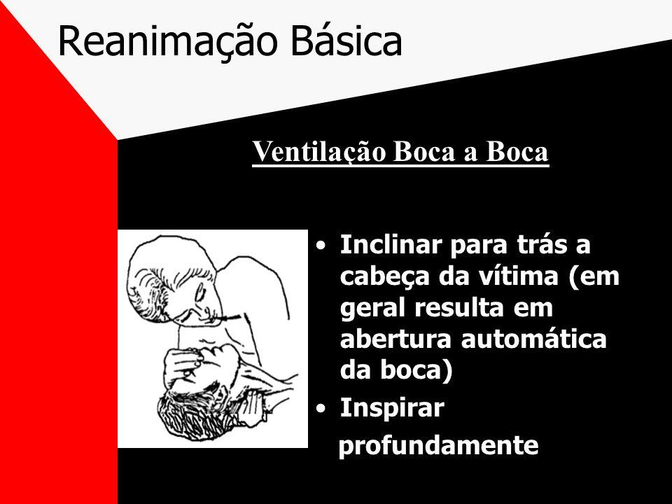 Reanimação Básica Inclinar para trás a cabeça da vítima (em geral resulta em abertura automática da boca) Inspirar profundamente Ventilação Boca a Boca