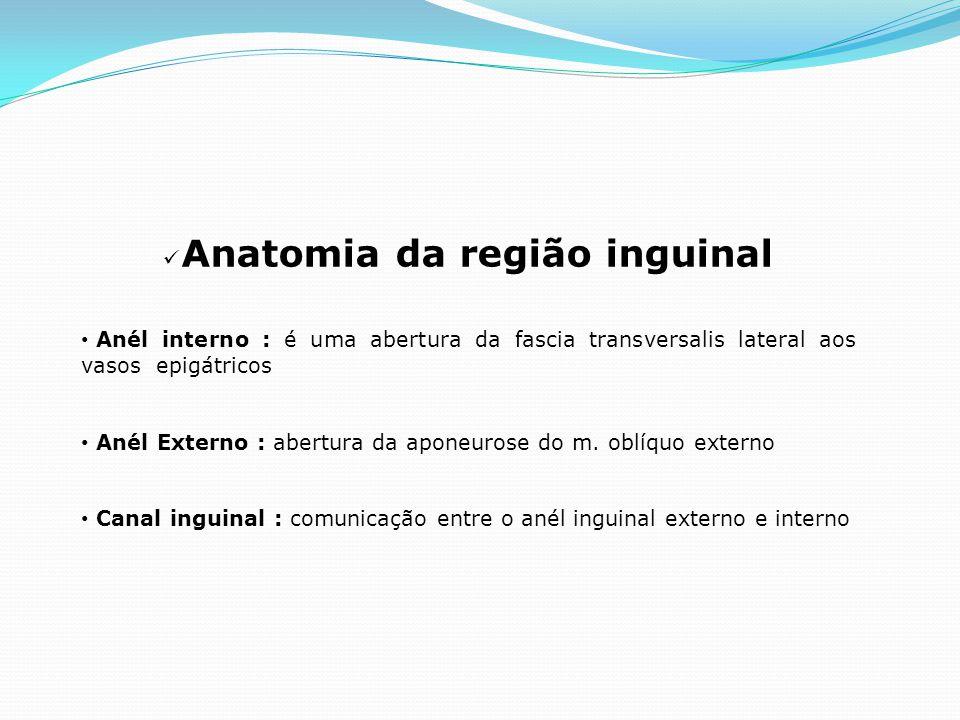 Anatomia da região inguinal Anél interno : é uma abertura da fascia transversalis lateral aos vasos epigátricos Anél Externo : abertura da aponeurose do m.