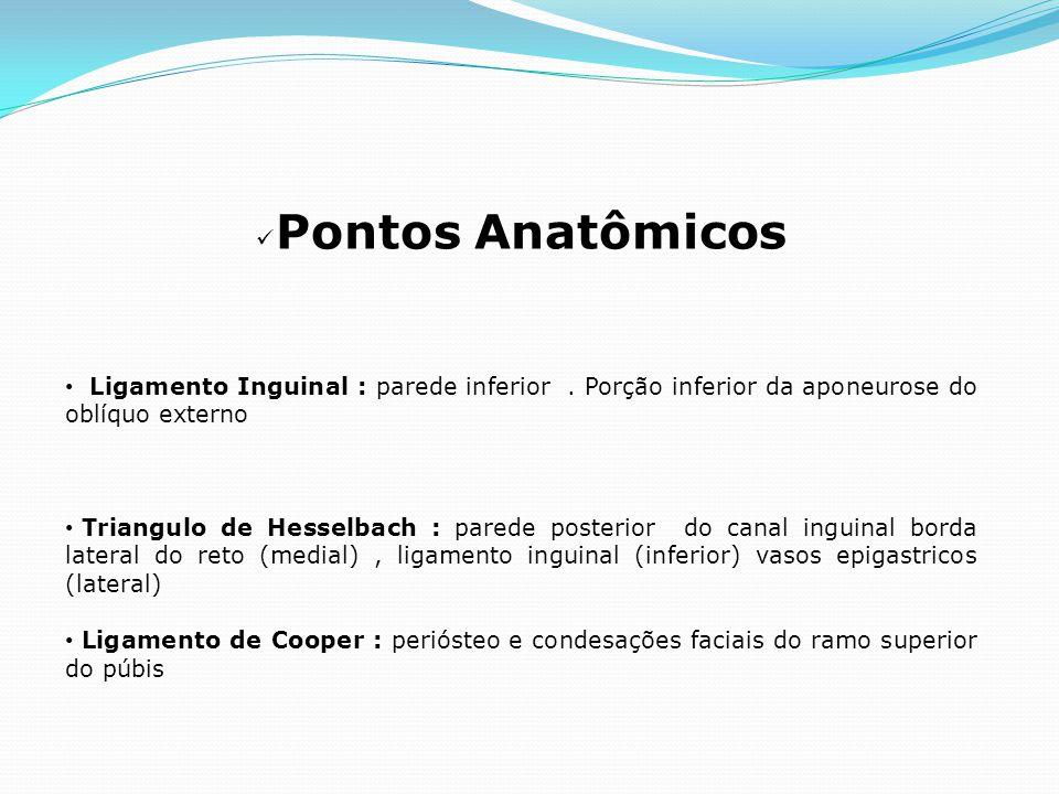 Pontos Anatômicos Ligamento Inguinal : parede inferior. Porção inferior da aponeurose do oblíquo externo Triangulo de Hesselbach : parede posterior do