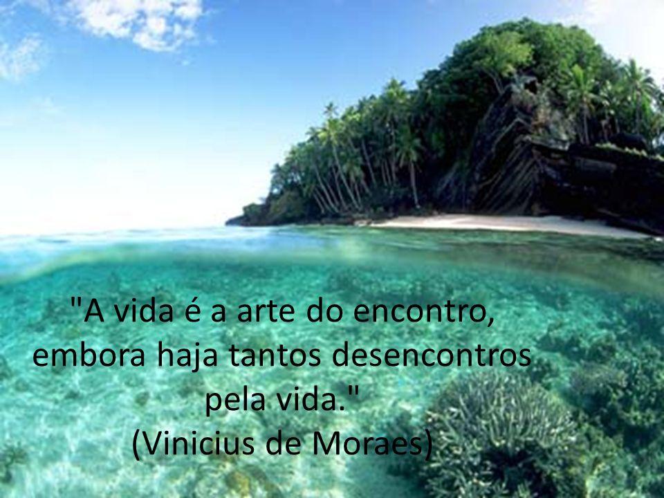 A vida é a arte do encontro, embora haja tantos desencontros pela vida. (Vinicius de Moraes)