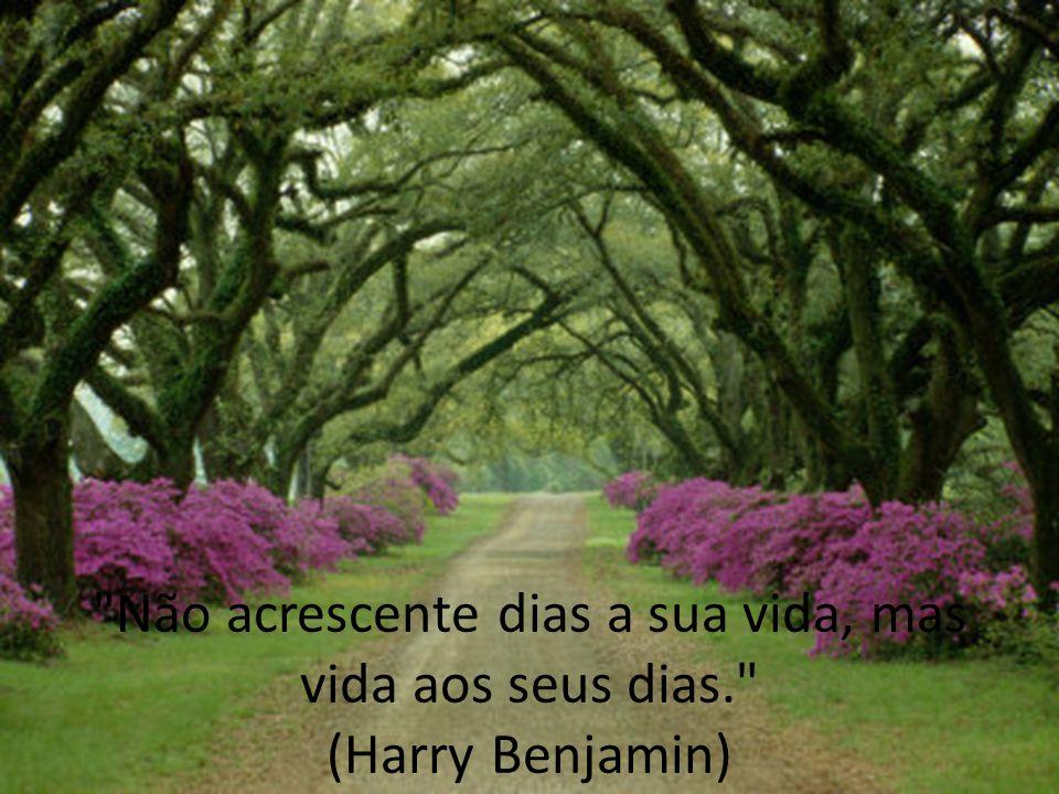 Não acrescente dias a sua vida, mas vida aos seus dias. (Harry Benjamin)