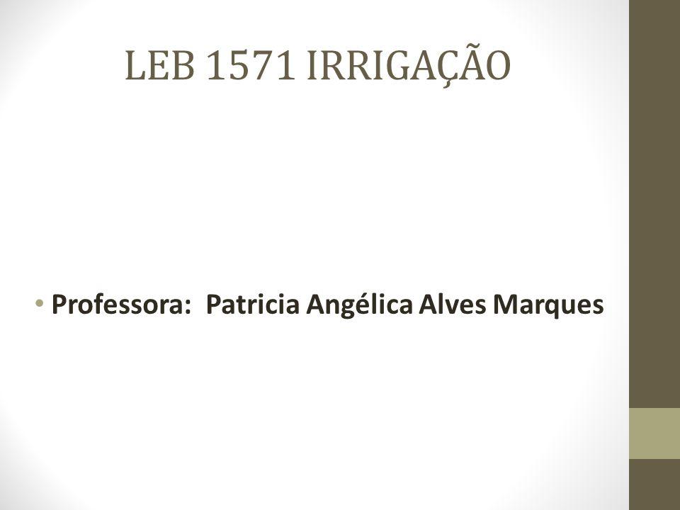 LEB 1571 IRRIGAÇÃO Professora: Patricia Angélica Alves Marques