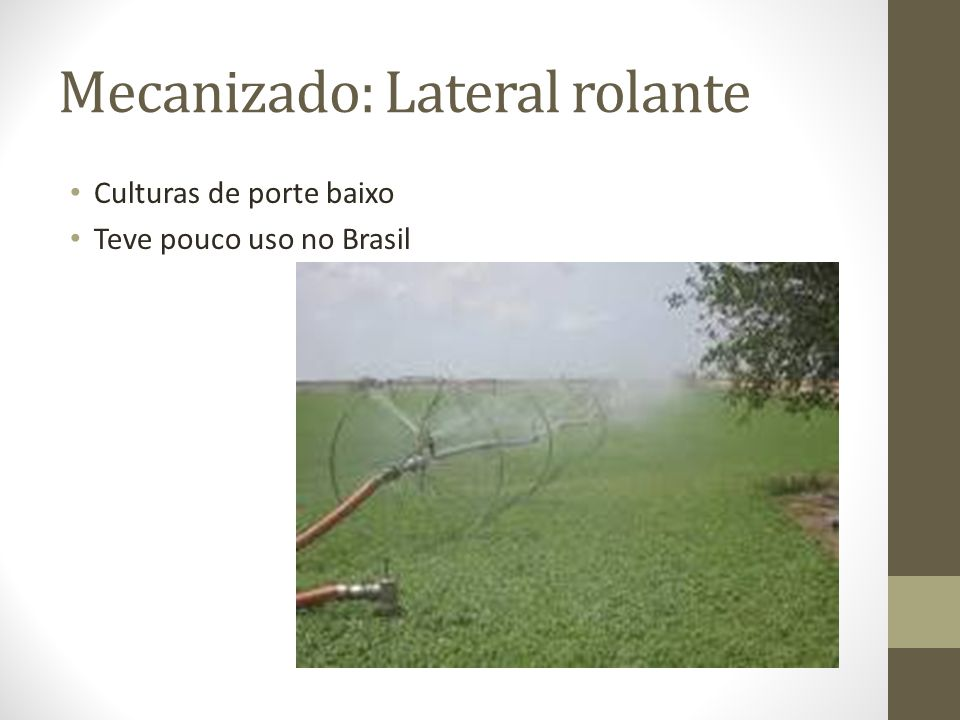 Mecanizado: Lateral rolante Culturas de porte baixo Teve pouco uso no Brasil