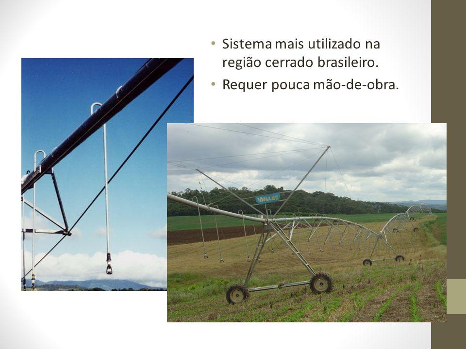 Sistema mais utilizado na região cerrado brasileiro. Requer pouca mão-de-obra.