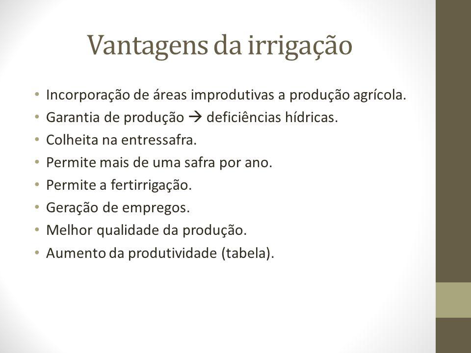 Irrigação no Brasil Região19962004Crescimento (%) Mil hectares irrigados Norte879927,10 Nordeste49573271,04 Centro-Oeste20231867,36 Sudeste89198820,27 Sul1196130113,40 Brasil2871343829,52 Fonte: Christofidis (2006) e Censo Agropecuário.