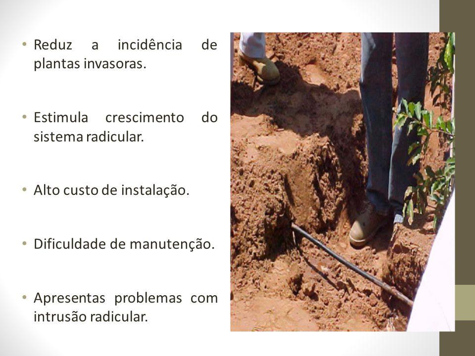 Reduz a incidência de plantas invasoras. Estimula crescimento do sistema radicular. Alto custo de instalação. Dificuldade de manutenção. Apresentas pr